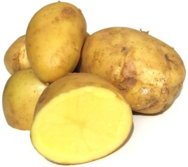patate-gg