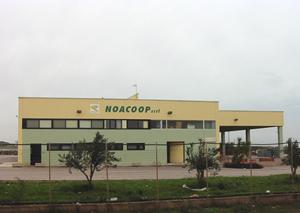 Noacoop
